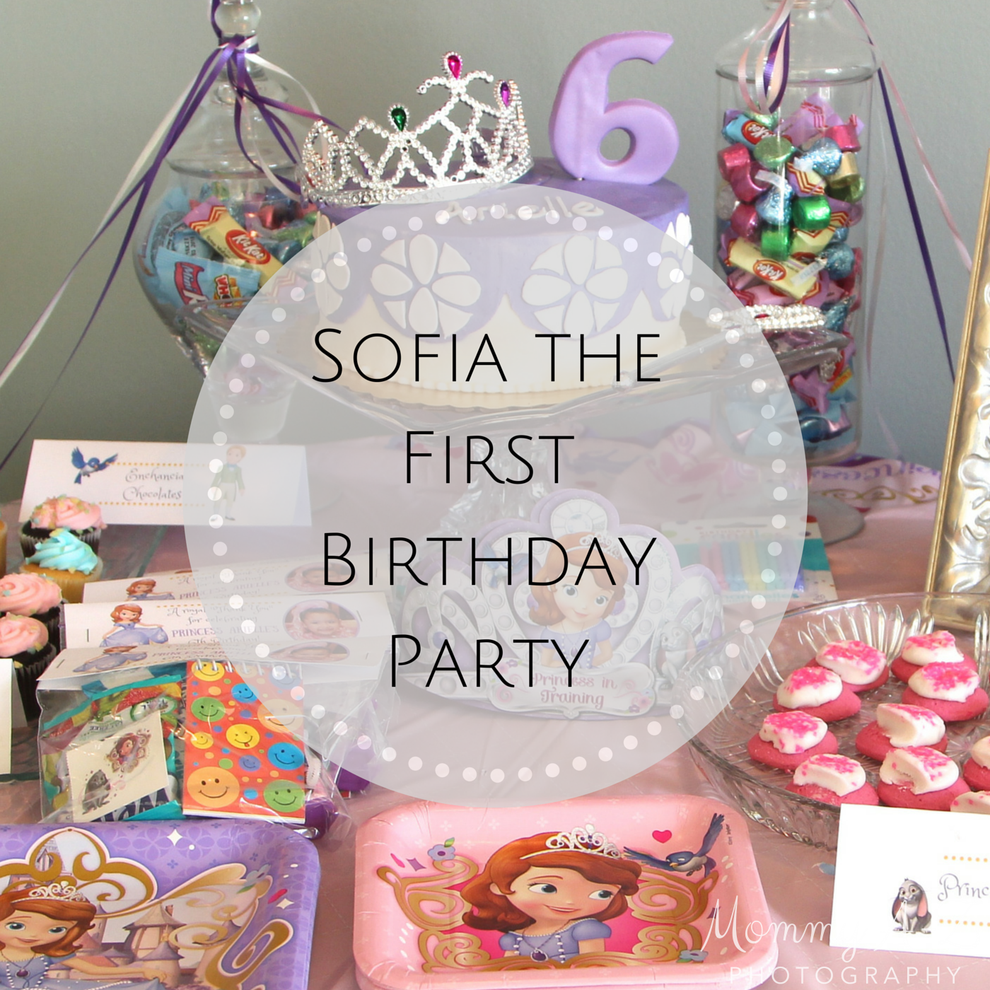 Sofia The First Birthday Party Mommy A Z